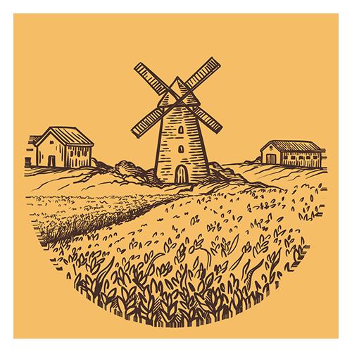 Coltivazione per ottenere malto in grani per birrificazione artigianale